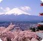 青岛去日本游旅游